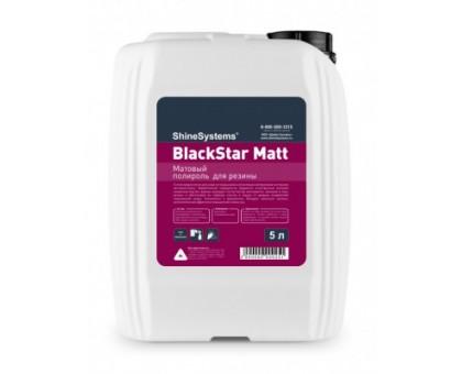 BlackStar Matt - матовый чернитель резины, 5л